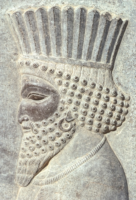 Stone relief carving of a Persian, Persepolis.